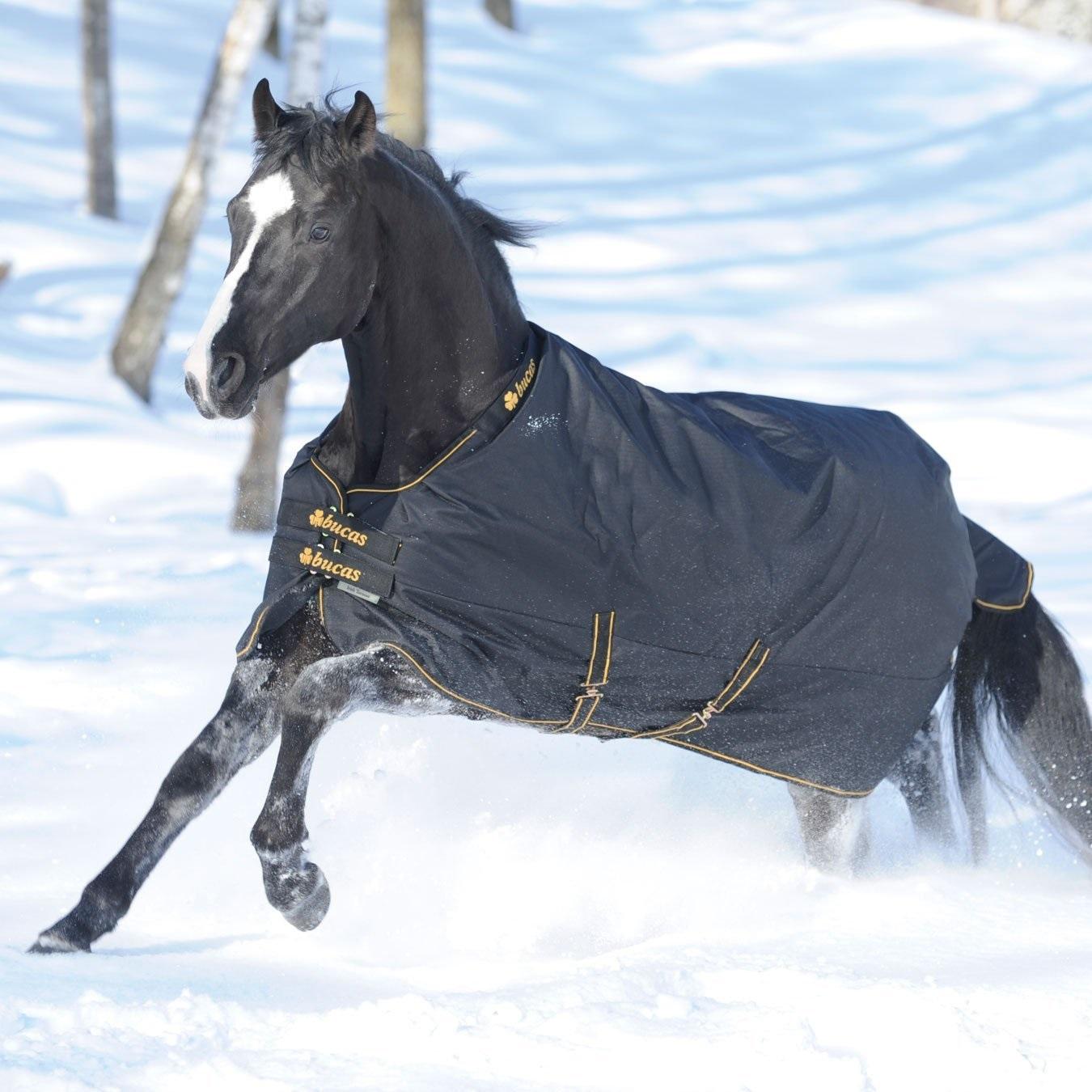 Pferde Weidedecken