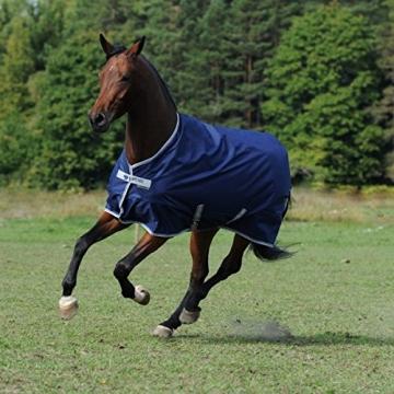 Pony Regendecke