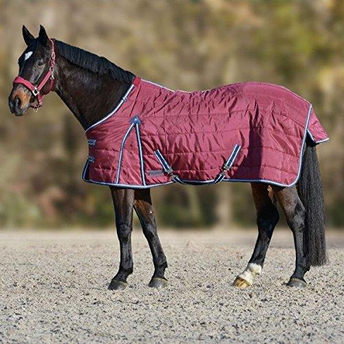 unbekannt Stalldecke Comfort, 200g, weinrot/nachtblau, 155 cm -