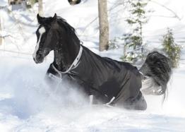 BUCAS Outdoor Pferdedecke SMARTEX RAIN, schwarz, 155 cm -