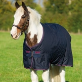 Horseware Amigo Bravo 12 XL Turnout Heavy 400g - Navy with Navy & Red, Groesse:160 -