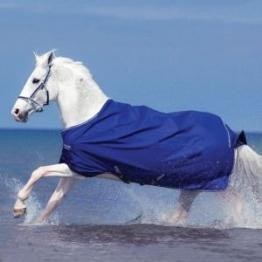 Horseware Amigo Hero Pony