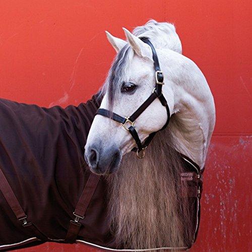 Horseware Stable
