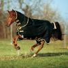 Horseware Rambo Supreme Turnout lite incl. abnehmbarem Halsteil / black with gold (mit Reflekt. u. Surefit), Groesse:125 -