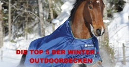 TOP 5 Winter Regendecken für Pferde