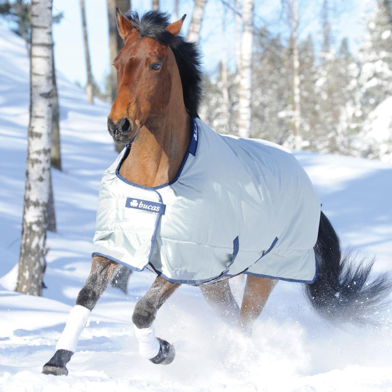 Pferde Outdoordecke