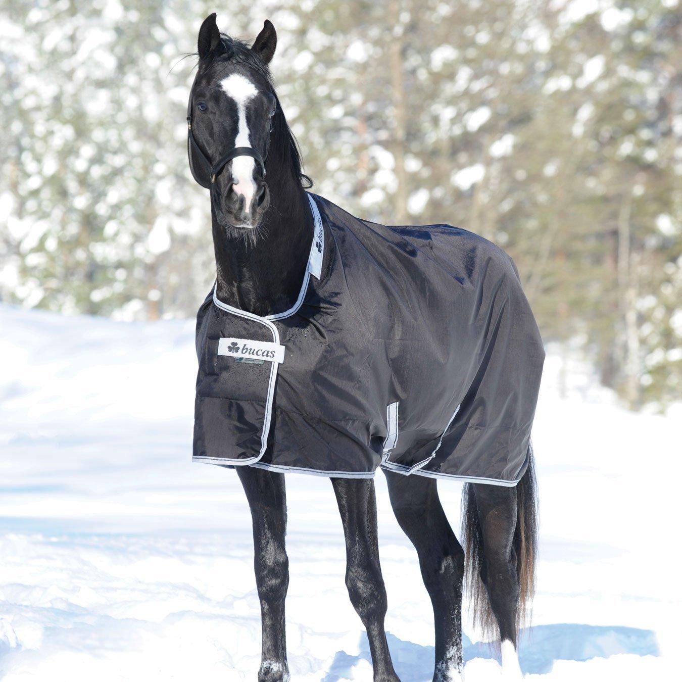 Winter Regendecken für Pferde