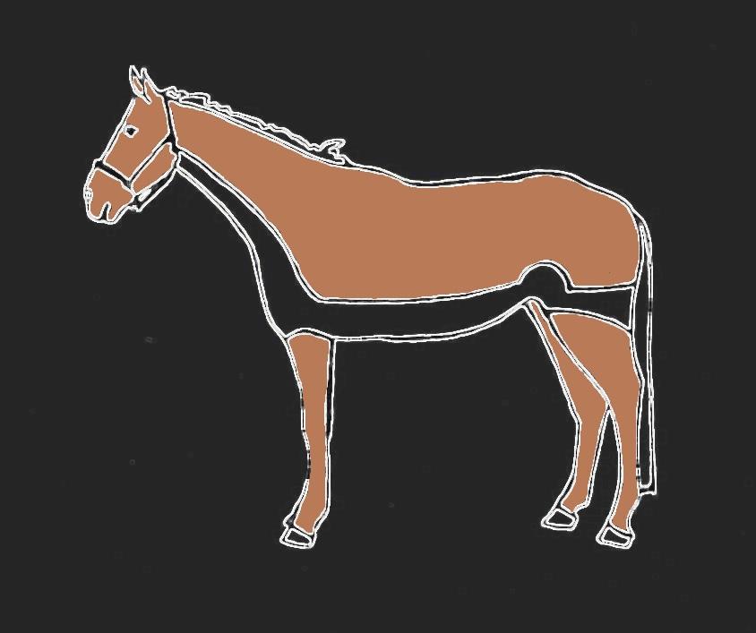 Pferdeschur Streifenschnitt