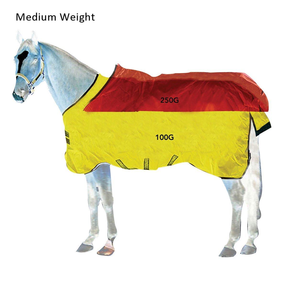 Horseware Decken
